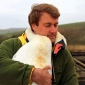 Го спасил лебедот. Толкава благодарност од птицата никој не очекувал