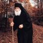 Разговор со старец Паисиј за соновите